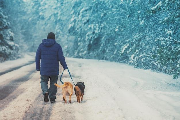 Uomo con due cani che camminano sulla strada di campagna innevata in inverno.