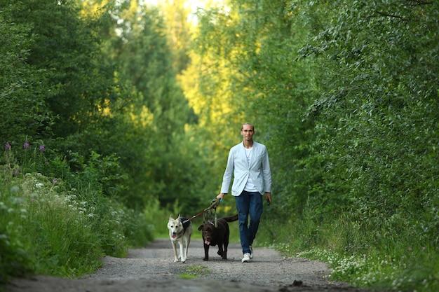 Uomo con due cani che camminano su una foresta soleggiata