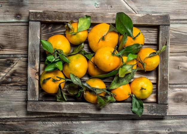 Mandarini con foglie su un vassoio. sul tavolo di legno