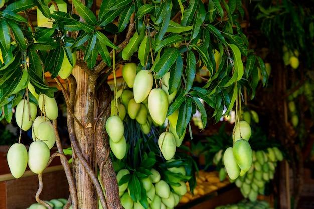 Stand del festival del mango con frutti di mango freschi nel mercato di strada