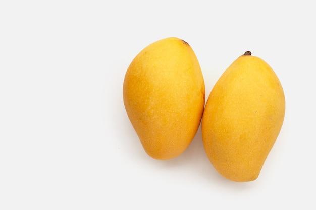 Frutto di mango su sfondo bianco.