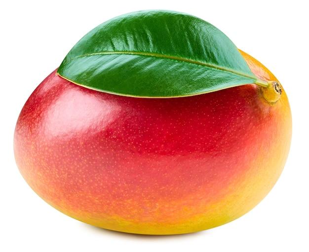 Mango isolato su sfondo bianco. percorso di residuo della potatura meccanica del mango maturo. mango con foglia