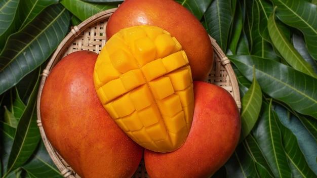 Mango, frutta tropicale, in un cesto di setaccio in legno di bambù su sfondo verde foglia, vista dall'alto, telaio completo, concetto di design raccolto bello e maturo.
