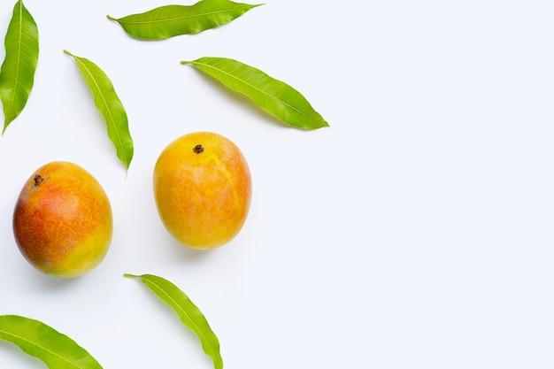 Mango, frutta tropicale con foglie su sfondo bianco. vista dall'alto