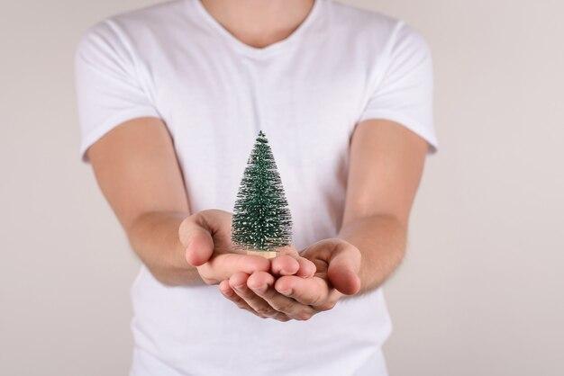 Equipaggia le mani che danno il piccolo albero di natale