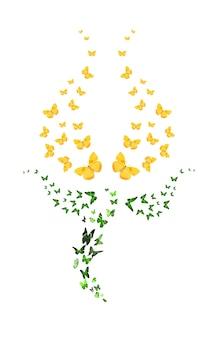Molte farfalle a forma di tulipano isolato su sfondo bianco. germoglio giallo. insetti tropicali. falene colorate per il design. foto di alta qualità