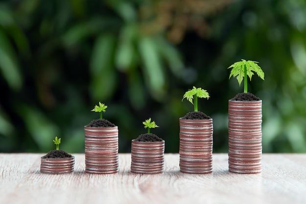Molte monete sono impilate a forma di grafico con alberello che cresce per concetti di pianificazione finanziaria.