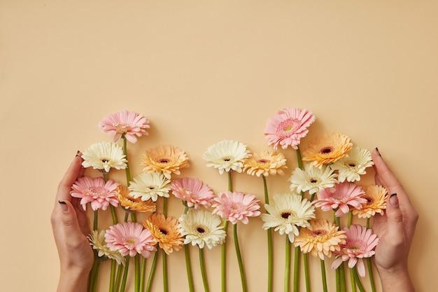 Molte diverse mani femminili di gerbere sono tenute su uno sfondo di carta gialla. biglietto di auguri per la festa della mamma o l'8 marzo. piatto lay