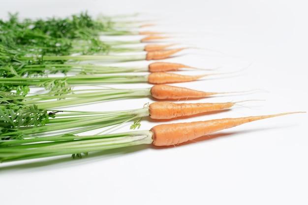Molte carote fresche, da grandi a piccole, isolate su bianco.