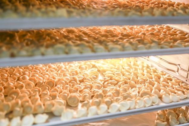 Molti gnocchi congelati in frigorifero di produzione aperto. scaffali per la conservazione di semilavorati surgelati.