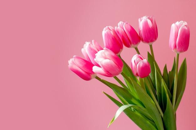 Molti tulipani rosa, bouquet