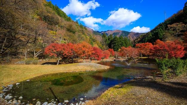 Stagione delle foglie d'autunno dell'acero nel parco fluviale giapponese e montagna con sfondo blu del cielo