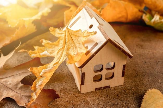 Foglia d'acero sul tetto di una casa modello autunno e concetto di isolamento domestico