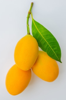 Prugna mariana frutta su sfondo bianco.