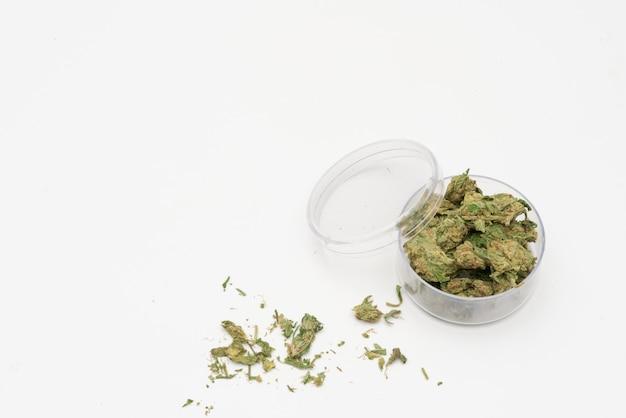 Cannabis marijuana medicinale, cannabis comune in un contenitore di vetro, droghe.