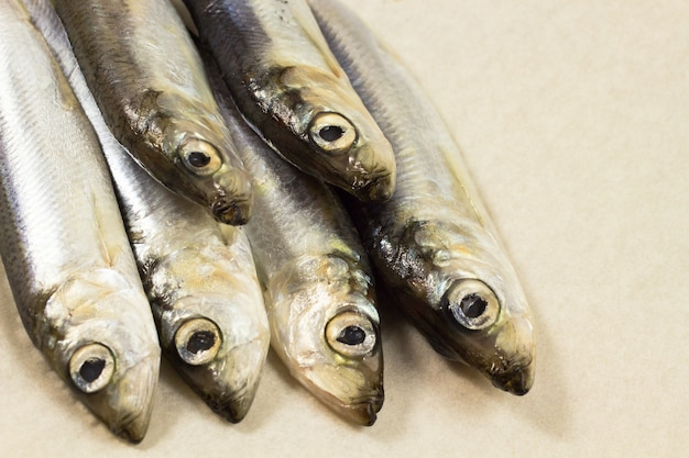 Aringa di pesce marino su fondo beige