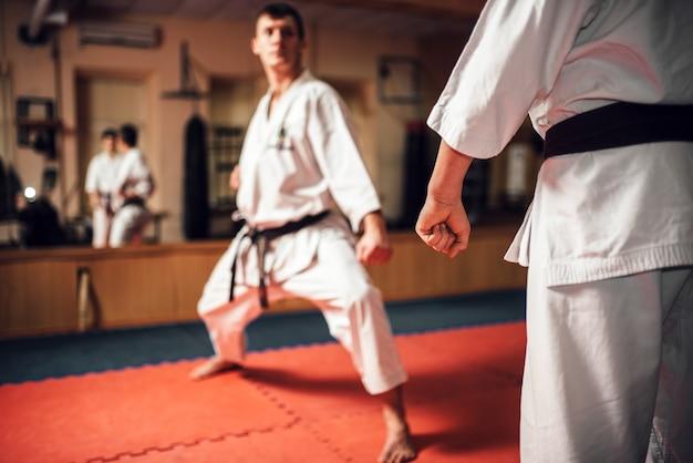 Arti marziali, allenamento al combattimento in azione