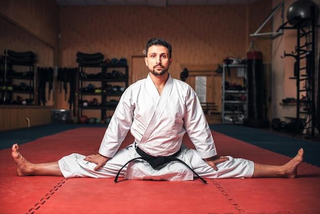 Maestro di arti marziali che fa esercizio di stretching
