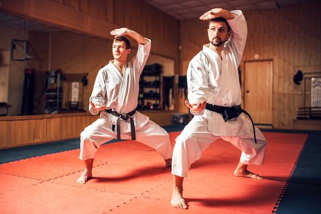 Maestri di arti marziali che addestrano abilità di combattimento