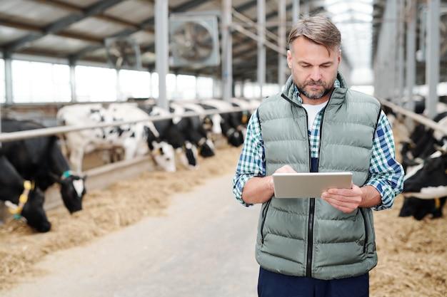 Testa matura e sicura di una grande fattoria moderna con touchpad alla ricerca di nuove attrezzature di lavoro nella rete