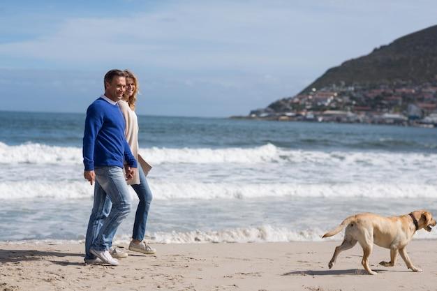 Coppie mature che camminano sulla spiaggia con il loro cane