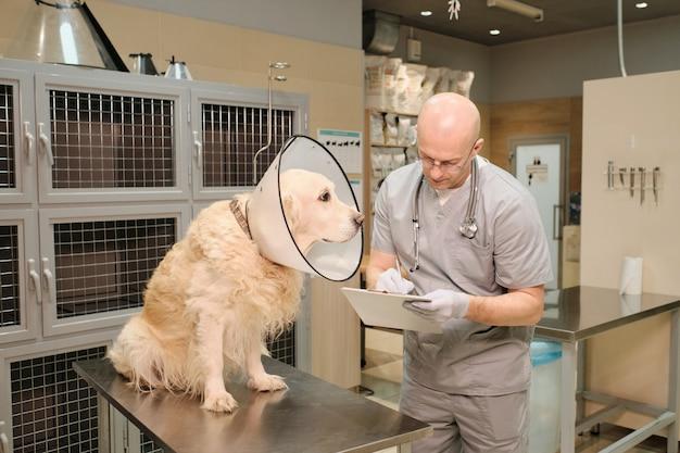 Medico maturo che scrive conclusione medica nella tessera sanitaria del suo paziente dopo la procedura presso la clinica veterinaria