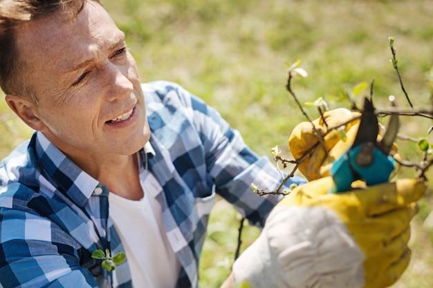 Ragazzo maturo indossando guanti lavorando in un giardino e potando i rami di un albero in una giornata di sole