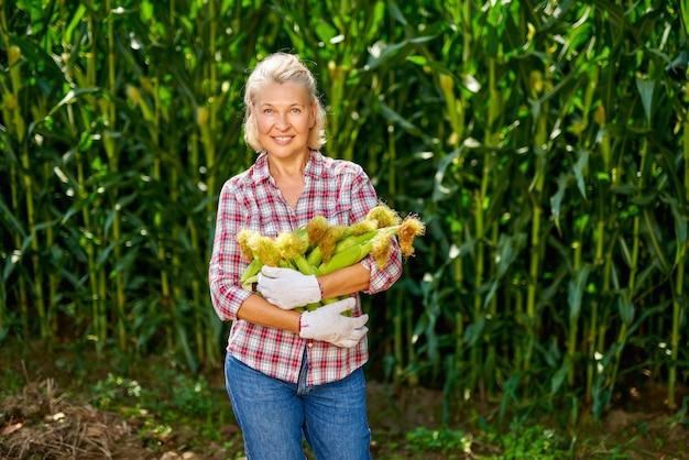 Contadina matura alla raccolta del mais.