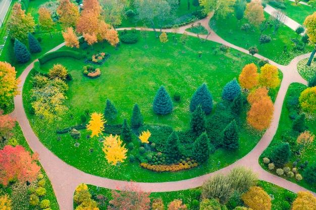 Il prato è circondato da alberi gialli e verdi, paesaggio autunnale. vista del drone.