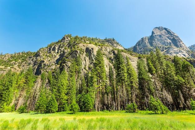 Prato e alberi circondati da montagne rocciose