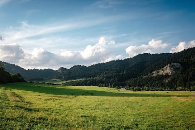 Prati con erba verde, montagne, cielo azzurro con nuvole e sole
