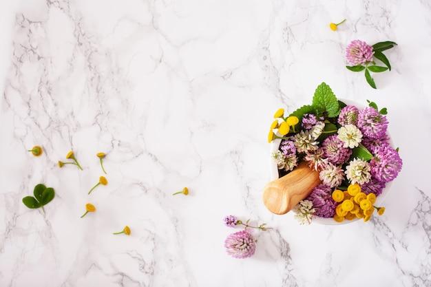Erbe medicinali di fiori in mortaio. medicina alternativa. trifoglio tansy timo melissa