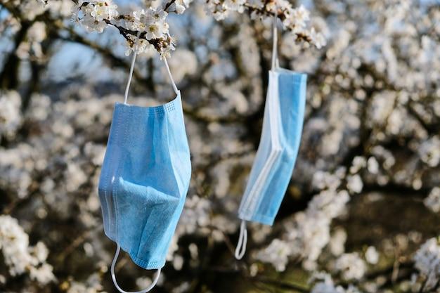 Le maschere mediche appendono su un ciliegio in fiore. concetto di quarantena e asma Foto Premium
