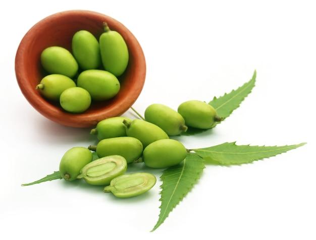 Frutti medicinali di neem su sfondo bianco