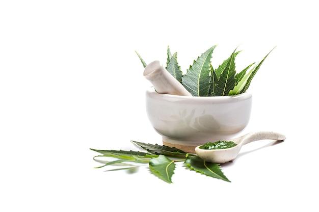 Foglie di neem medicinali in mortaio e pestello con pasta di neem sulla superficie bianca