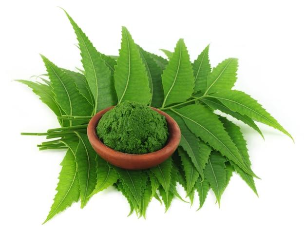 Foglie medicinali di neem con pasta su una ciotola marrone