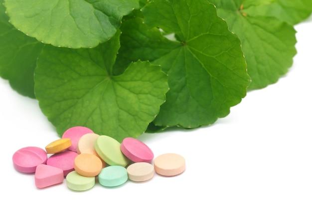 Foglie medicinali di ringraziamento con pillole colorate su sfondo bianco