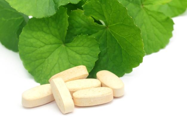 Foglie medicinali di ringraziamento con pillole su sfondo bianco