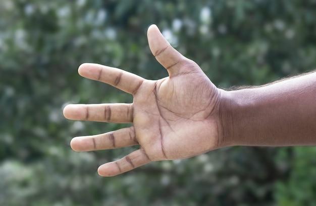 Uomini che allungano la mano per una stretta di mano con altri o che tengono qualcosa su uno sfondo bokeh verde morbido