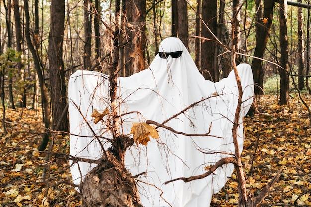 Un allegro fantasma nella foresta
