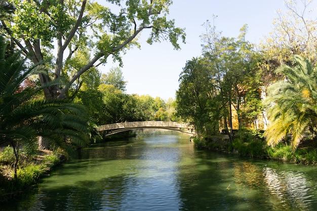 Ponte di metallo nel mezzo di un fiume circondato da alberi in un parco