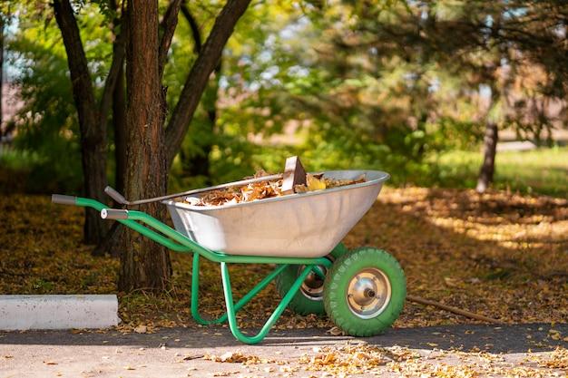 Una carriola di metallo per un giardiniere che raccoglie foglie gialle cadute in un parco