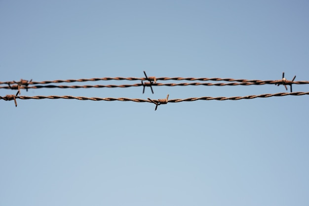 Recinto di filo metallico con cielo