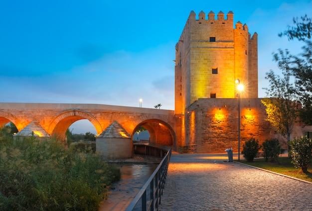Moschea e ponte romano a cordoba, spagna