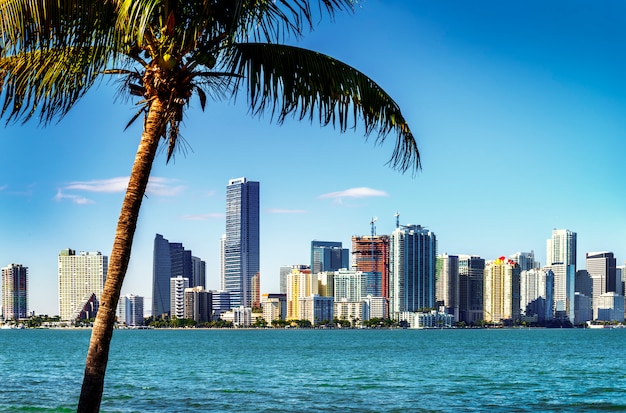 Skyline di miami downtown