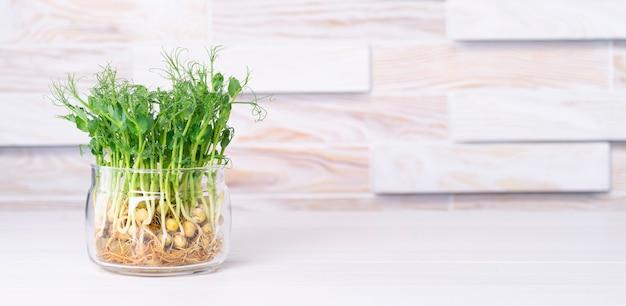 Micro verdi coltivate in barattolo di vetro sul tavolo della cucina con spazio per il testo.