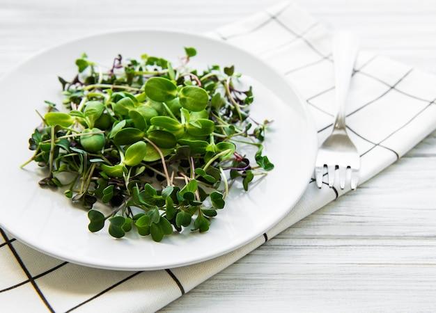 Micro verdi in un piatto su una superficie bianca
