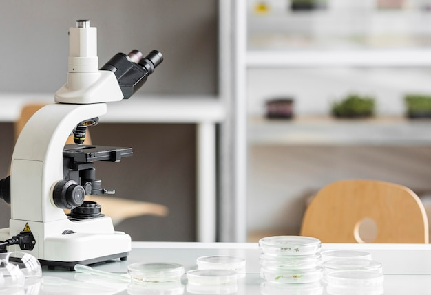 Microscopio con capsule di petri nel laboratorio di biotecnologie