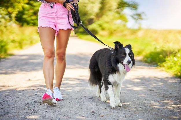 Sezione mediana della femmina che passeggia con il suo animale domestico nel tempo libero Foto Premium