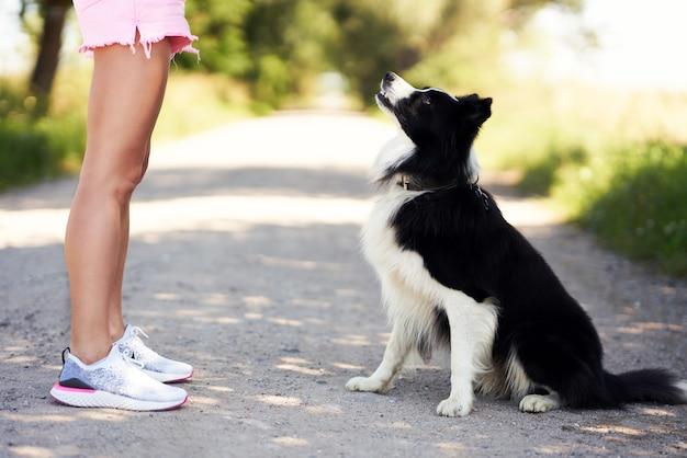 Sezione mediana della femmina che passeggia con il suo animale domestico nel tempo libero